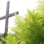 Kapu svētki